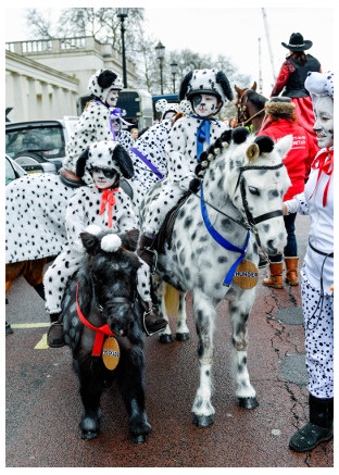 2017 Parade Dalmations by Jo Monck