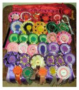 Richards rosettes_for_Bea