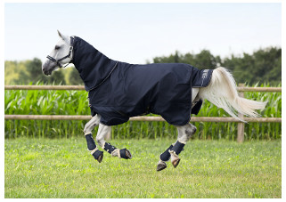 The Elastic Inserts Above Horse S Forelegs And Soft Padding In Withers Area Provide Maximum Ease Of Movement As Well Safety