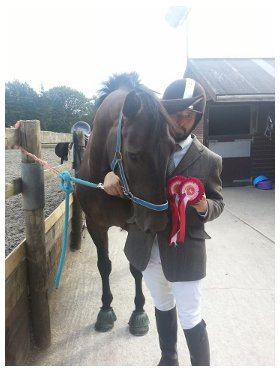 Rich tommy showjumping rossettes